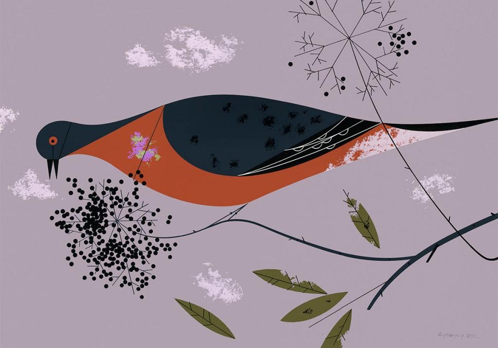 Passenger Pigeon   Charley Harper Prints   For Sale